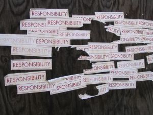 responsibility Photo:Nicole Shelby